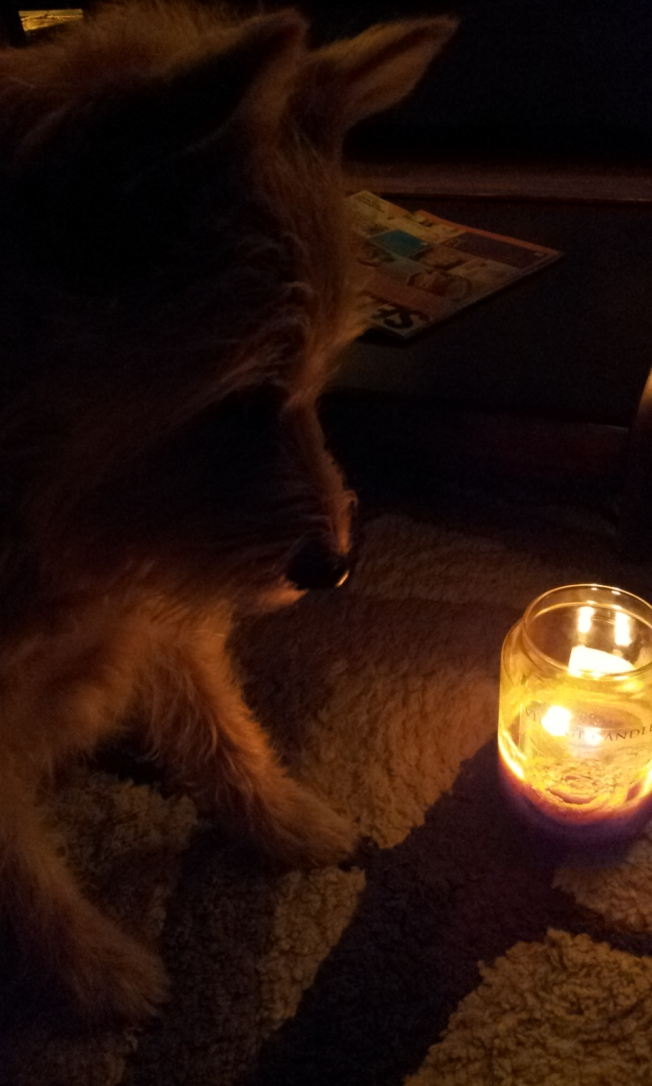 Light Amidst Darkness